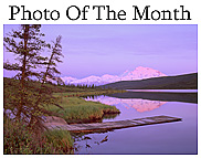 Photo Of The Month!